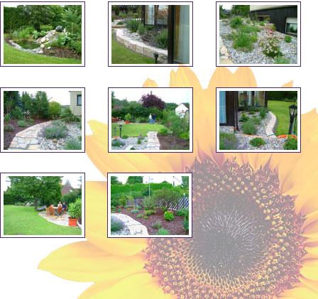 garten landschaftsbau martin ebert garten. Black Bedroom Furniture Sets. Home Design Ideas