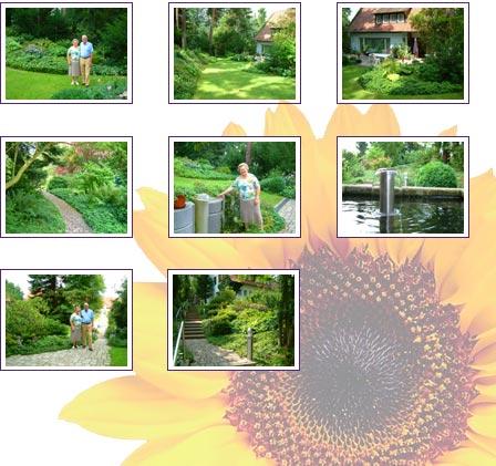 garten landschaftsbau martin ebert garten umgestaltung landschaftsplanung bagger lkw. Black Bedroom Furniture Sets. Home Design Ideas